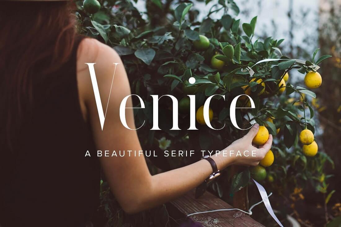 venice-cover- 100+ Best Modern Serif Fonts design tips