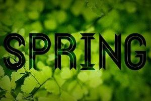 wf-springtex-f