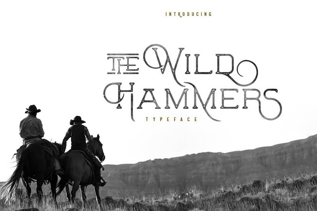 wild-hammers 100+ Best Modern Serif Fonts design tips